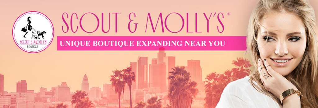 Blog_FeaturedImage-Scout-and-Mollys-Franchise