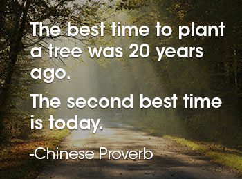 The best time to plant a tree was 20 years ago. The second best time is today.